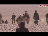 Сирия: очередной удар коалиции обрушился на армию Асада в Дейр-эз-Зоре