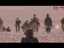 Сирия очередной удар коалиции обрушился на армию Асада в Дейр эз Зоре