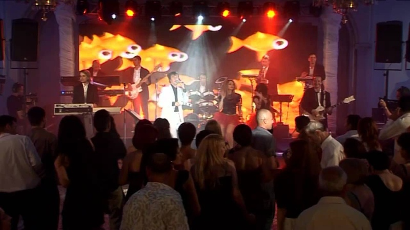 TEENAGE WEDDING (YOU NEVER CAN TELL) - Calin Geambasu Band (concert privat)