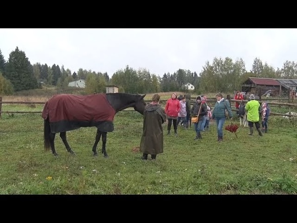 Село Середа и новый туристический маршрут. ДИА-ТВ