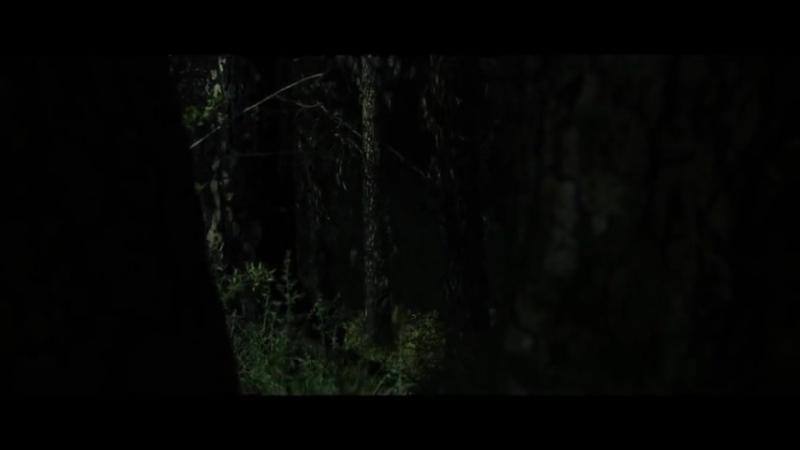 Одичавшие _ Feral (2018) Трейлер._480p_alt