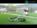 Укладка искусственной травы 2