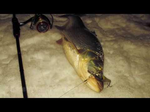 Рыбалка в центре Москвы 06 02 19