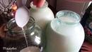 Как отделить сливки от молока без сепаратора