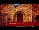 Саид ибн Амр
