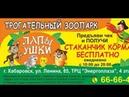 Реклама на чеках - отзыв от трогательного зоопарка Лапы Ушки г. Хабаровск