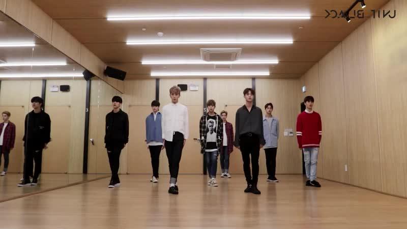 Unit Black - Steal Your Heart Dance Practice Mirror