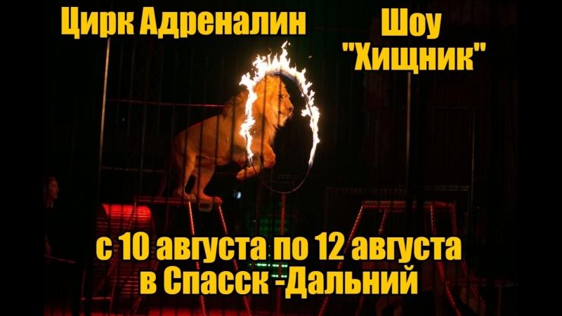 Цирк Адреналин в Спасск - Дальний с 10 по 12 августа