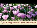 Счастливой весны и солнечного настроения 720p.mp4