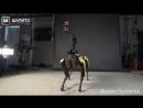 Робот-собака Boston Dynamics теперь умеет танцевать. Пока только под Uptown Funk зато как!.mp4
