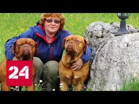 Трагедия в Подмосковье опыт не спас заводчицу собак от смерти Россия 24