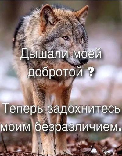 Давид, 33 года, Москва
