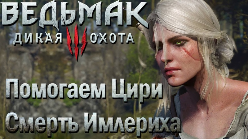 Убиваем Имлериха И Ведьм из Кривоуховых Топей Ведьмак 3 Дикая Охота