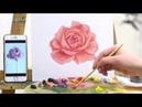 Видео-урок «Пишем розу масляными красками»