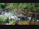 The Birks of Aberfeldy, Perthshire, Scotland, the UK/Аберфелди, Шотландия, Великобритания