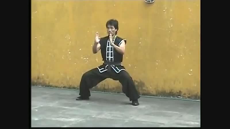 Kati Tigre e Garça (Linhagem Familia Lau) Mestre Lap Wah Ng