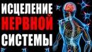 Исцеление Нервной Системы с Помощью Музыки | Золотое Сечение для Лечение Нервов | Медитация