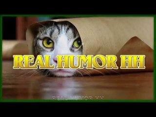 Подборка приколов от Real Humor HH №5