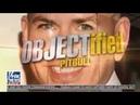 OBJECTified Pitbull 8 12 18 ¦ Breaking Fox News August 12 2018
