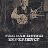 THE DAD HORSE EXPERIENCE • 08.06 • СПБ