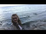 на южном берегу Финского залива #ветер