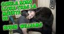 Gorila koko LLora tras enterarse de la muerte de Robin Williams