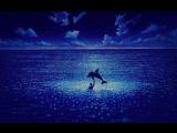 Истина где-то там Фильм Люка Бессона Голубая бездна.(1988),.Le grand bleu..The Big Blue. HD.