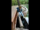 По узкому мосту над ручьём Гремячий Ключ