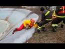 Пожарные спасли провалившуюся под лед лису