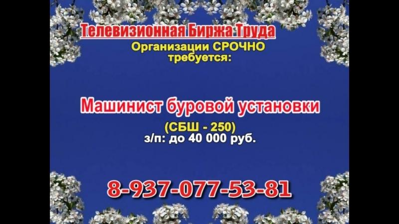 27 апреля _19.20_Работа в Самаре_Телевизионная Биржа Труда