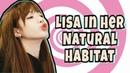 Lisa In Her Natural Habitat