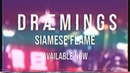Siamese Flame