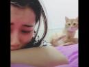 Кот волнуется