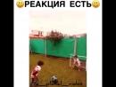 Отличный футбольный вратарь.