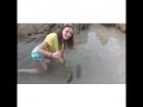 Один из встретившихся нам морских огурцов