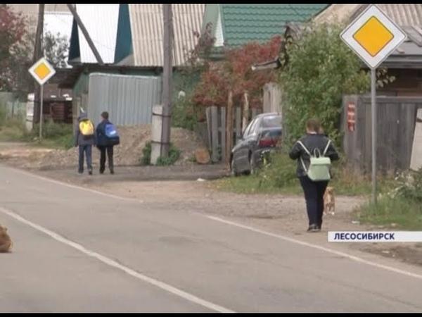 Школьники в Лесосибирске идут до остановки 2 километра: ее не могут поставить ближе из-за бюрократии