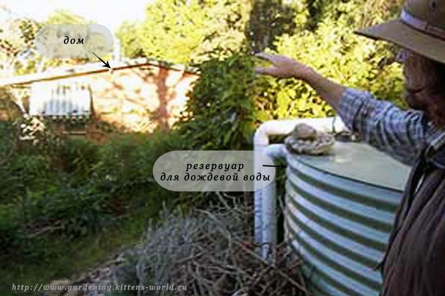 Альтернативное собирание дождевой воды