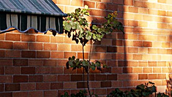 Альтернативное собирание дождевой воды - абрикос у стены дома