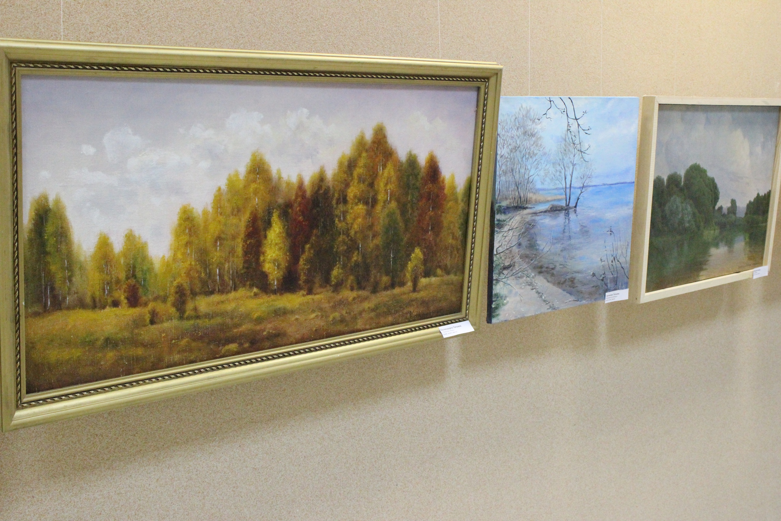 Борисовская библиотека представила собственную коллекцию картин местных художников