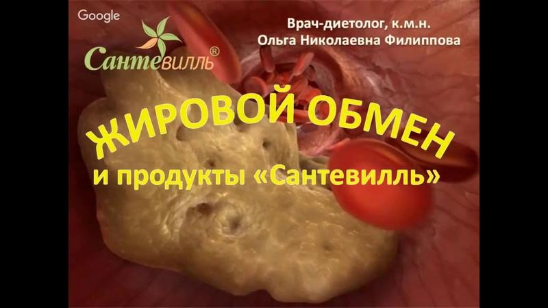 Вебинар 15 ноября в 16.00 Мск ЖИРОВОЙ ОБМЕН. Как снизить холестерин