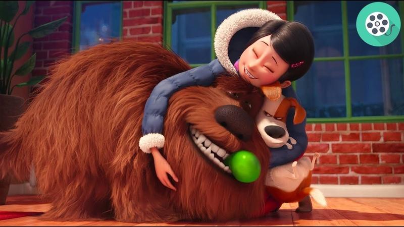 Кэти приводит домой из приюта огромного мохнатого ньюфаундленда по имени Дюк