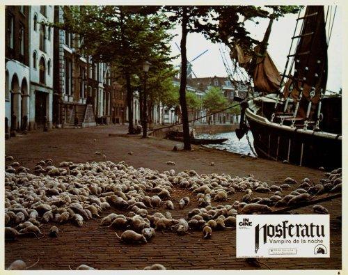 Для фильма «Носферату — призрак ночи» режиссеру Вернер Херцог нужны были тысячи крыс. Съемки проходили в прекрасном голландском городе Делфт. Еще до начала съемок режиссер рассказал о своей затее муниципальному совету Делфта и получил согласие. Он предост