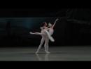 Лебединое озеро - Театр балета им. Якобсона. Мариинский театр