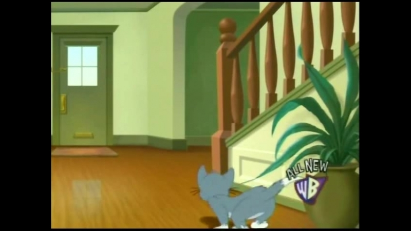 Tom and Jerry Tales - Game of Mouse and Cat