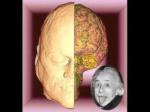 How Albert Einstein's Brain Worked Video Will Blow Your Mind !