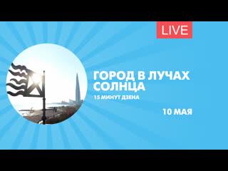 Петербург в лучах солнца. дзен-стрим для борьбы с непогодой