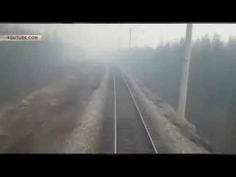 Огненная дорога российский поезд промчался сквозь полыхающий лес под Хабаровском