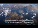 Мусорный остров в Карибском море Масштабы ужасны