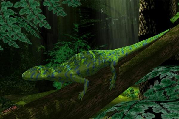 В Гранд-Каньоне нашли следы рептилии, которым больше 300 млн лет Отпечатки следов пресмыкающегося каменноугольного периода заставили задуматься отом, как именно древняя рептилия