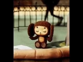 Monkey.mp4